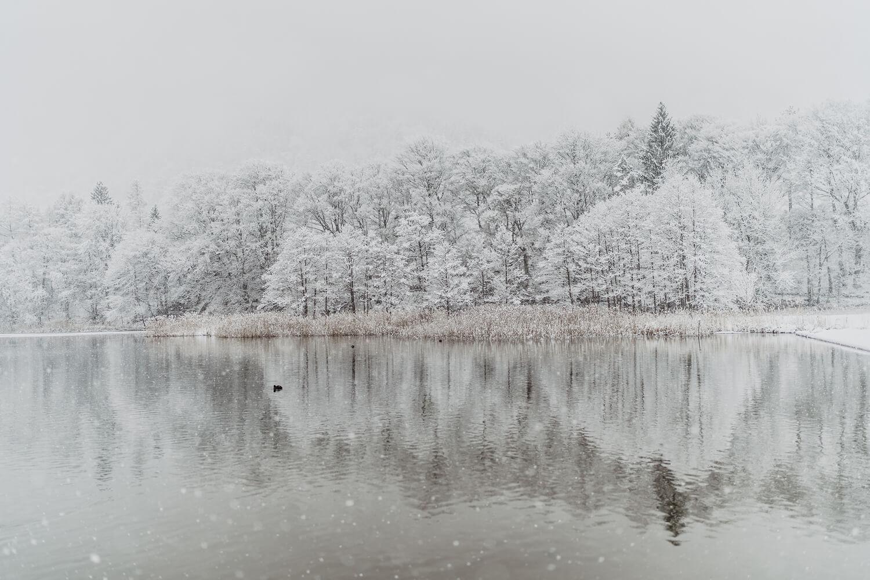 Paarshooting Kramsach Reintalersee Krummsee