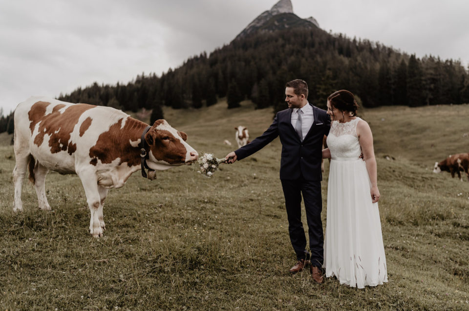 After Wedding Shooting Berg Alm Alpen Tirol